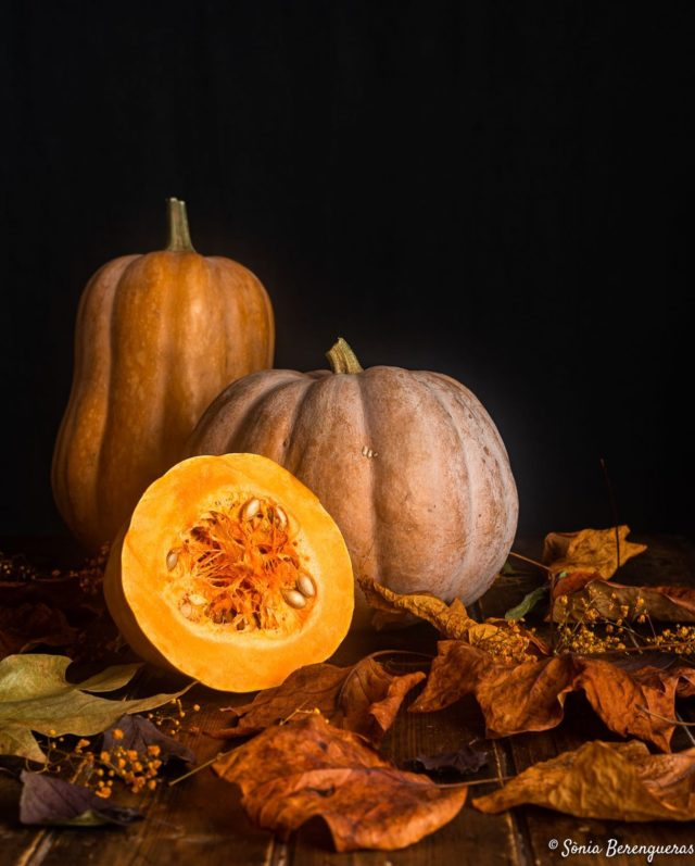 Avui va de carbasses; bon dia!  🍁🍁🍁  Hoy va de calabazas; buenos días! 🍁🍁🍁  Today is about pumpkins; good morning! 🍁🍁🍁  #pavisucre #food #foodie #foodphotography #foodstagram #foodstylist #foodstyling #pumpkin #carbassa #calabaza #autumn #autumnvibes #seasonalfood #km0 #igers #instafood #instagramers #beautifulcuisines #hautecuisines #foodfluffer #still_life_gallery #bodegon #tardor #somgastronomia #bcnmoltmes #descobreixcatalunya #catalunyaexperience