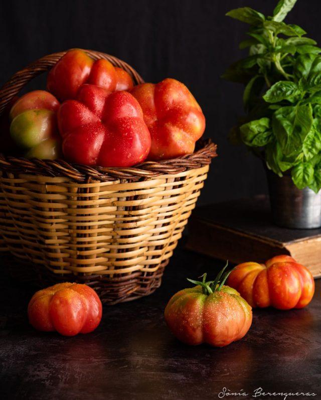 Temps de tomàquets 🍅  #pavisucre #tomaquet #tomates #tomatoes #food #foodie #foodphotography #foodstagram #foodstylist #foodstyling #km0 #productedeproximitat #seasonalfood #healthyfood #still_life_gallery #hautecuisines #beautifulcuisines #igers #igerscatalunya #instafood #onmytable